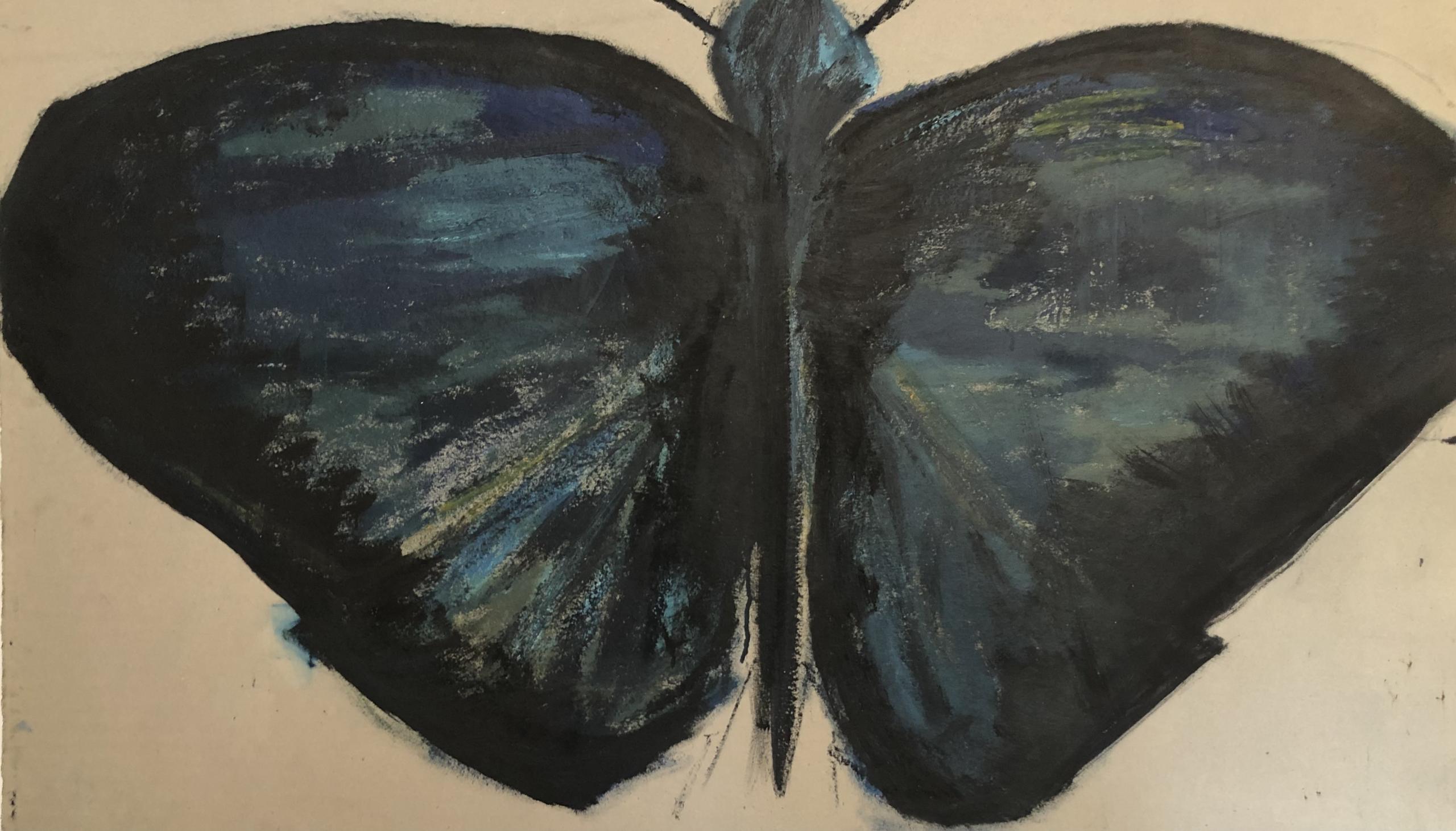 Sommerfugl på pap 3